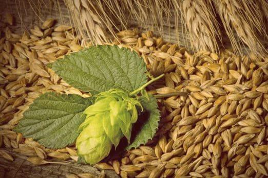 Sostenibilità nel mondo della birra: un incontro difficile