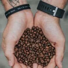 Vinhood coffee academy un corso digitale