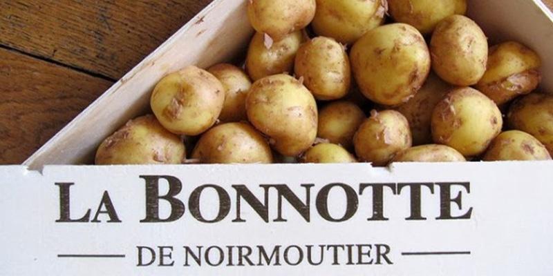 patata Bonnotte, la più cara del mondo